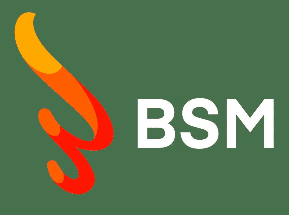 bsm-logo-bianco